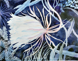 Bramhakamal (Star of Bethlehem) by Manju Srivatsa , Impressionism Painting, Watercolor on Paper, Blue color