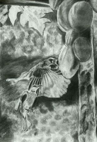 WINGS by Reshma M, Illustration Drawing, Charcoal on Canvas, Gray color