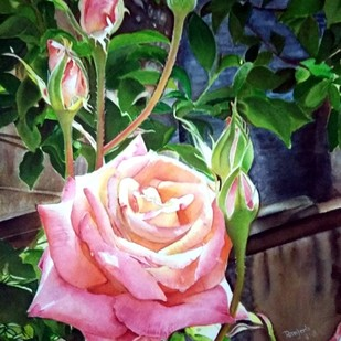 The shining Rose by Ranjeeta verma, Realism Painting, Watercolor on Paper, Green color