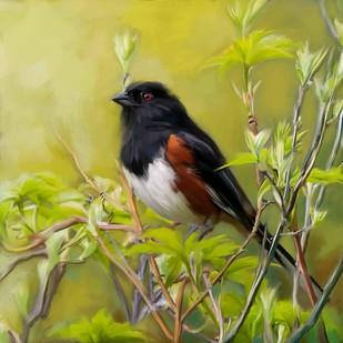 BLACK BIRD IN FOREST Digital Print by The Print Studio,Digital