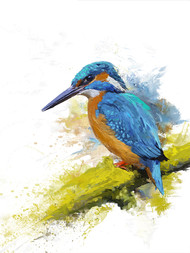 KINGFISHER-23 Digital Print by The Print Studio,Digital