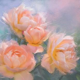 Peach Roses Digital Print by The Print Studio,Digital