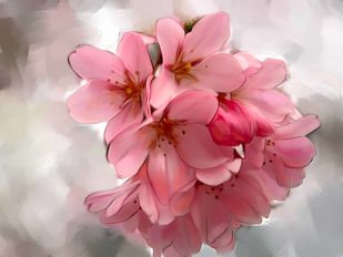 Pink Blooms - 45 Digital Print by The Print Studio,Digital