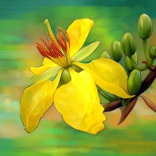 Flower - 65 Digital Print by The Print Studio,Digital
