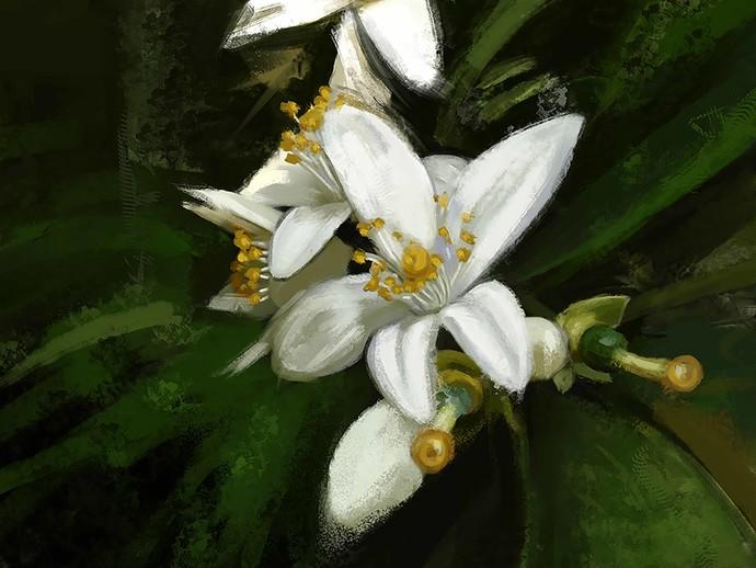 Morning Blooms - 78 Digital Print by The Print Studio,Digital
