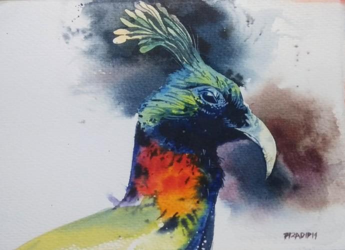 Peacock by Pradipkumar Jadhav, Impressionism Painting, Watercolor on Paper, Gray color