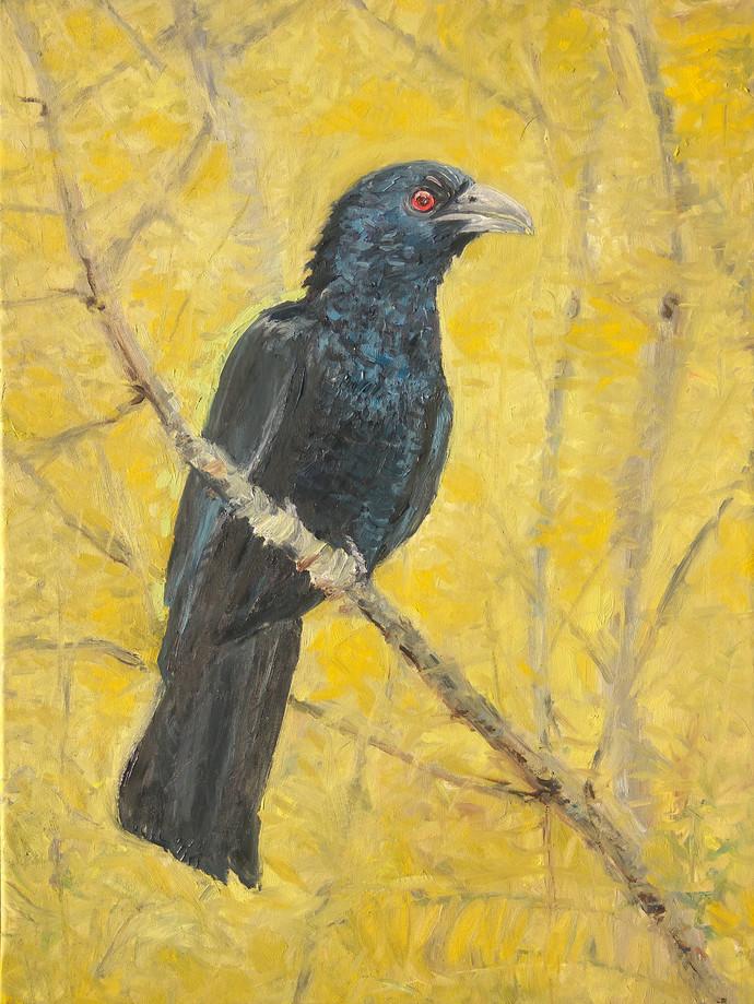 Anya-Vapa (कोयल/Kokila) by Animesh Roy, Expressionism Painting, Oil on Linen, Beige color