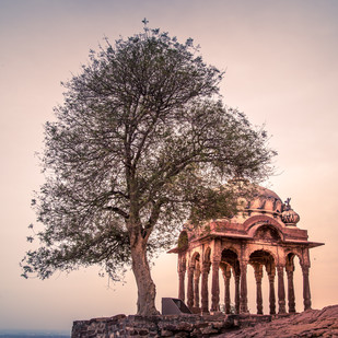 Mehrangarh Fort, Jodhpur - Rajasthan by Tiby Cherian, Image Photography, Digital Print on Archival Paper, Pink color