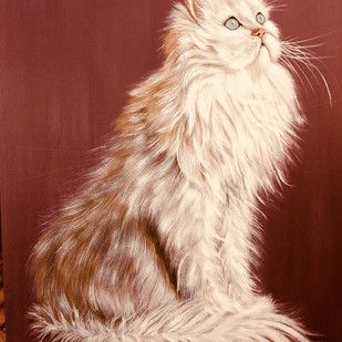 The White Cat by Soma Sen, Photorealism Painting, Acrylic on Canvas, Brown color