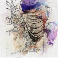 untitled by Gopal Mehan, Abstract Painting, Watercolor and charcoal on paper, Gray color