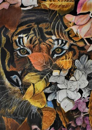 Tiger Eyes by Shailendra Khadkikar, Photorealism Painting, Color Pencil on Paper, Birch color