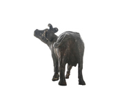 Twisted Cow 1 Artifact By Arpan Patel for Studio Kassa