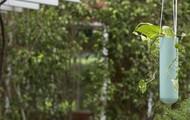 PoppadumArt Lab Planter - Powder Blue Garden Decor By PoppadumArt