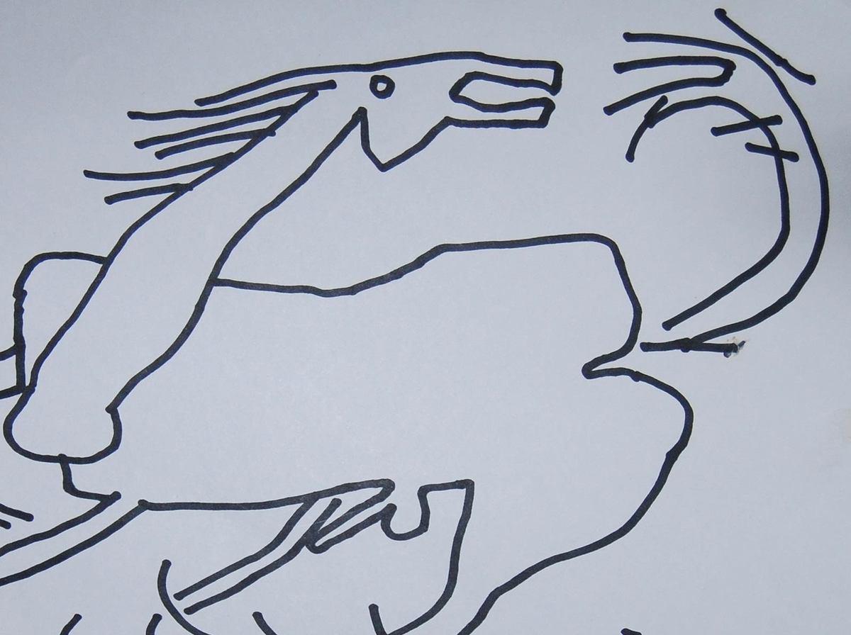 Prakash karmakar horse ink on paper detail 2